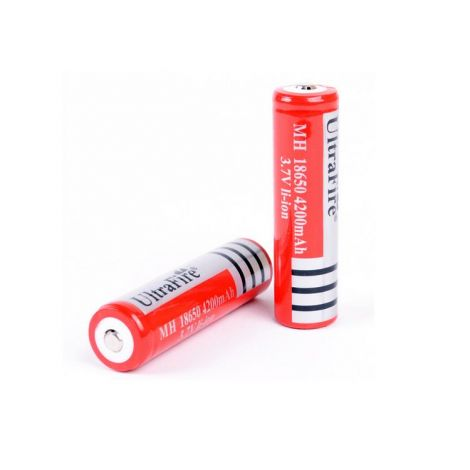 2 batterie ricaricabili 18650